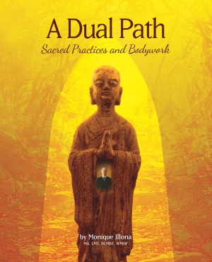 Dual Path Book Cover